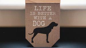Preview wallpaper words, inscription, dog, phrase