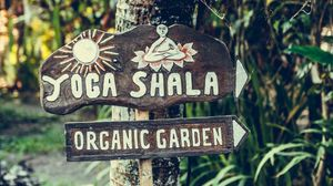 Preview wallpaper yoga, signboard, garden, organic, wood
