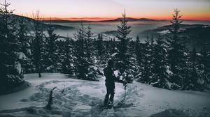 Preview wallpaper skier, snow, winter, trees