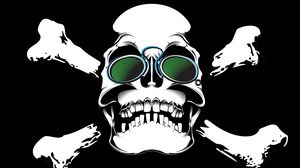 Preview wallpaper skull, glasses, bones, art