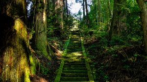 Preview wallpaper stairs, moss, trees, japan