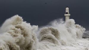 Preview wallpaper storm, tempest, lighthouse, sky, birds, waves