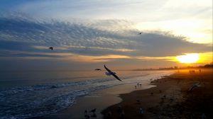 Preview wallpaper sunset, sea, birds, sky, people, beach