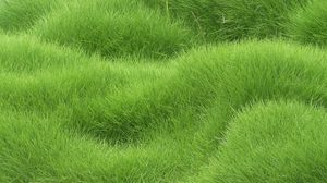 Preview wallpaper texture, grass, field