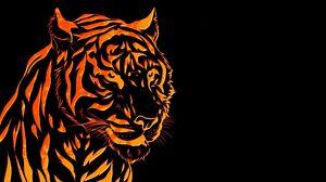 Preview wallpaper tiger, line, graph
