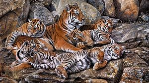 Preview wallpaper tigers, predators, young, hdr