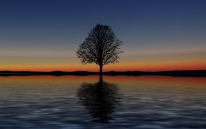 Preview wallpaper tree, lonely, horizon, reflection, sunset, minimalism