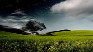 Preview wallpaper tree, sky, clouds, whirlwind, day, night, stars