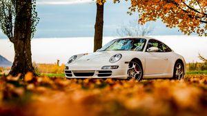 Preview wallpaper trees, autumn, 911, white, porsche, sky, leaves