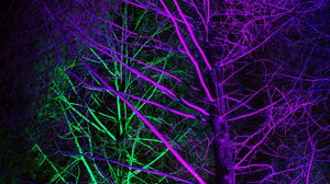 Preview wallpaper trees, backlight, neon, purple, green