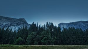 Preview wallpaper trees, forest, mountains, usa, california, yosemite valley, national park