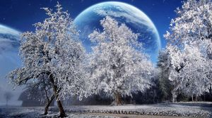 Preview wallpaper trees, hoarfrost, planet, earth, sky, stars, park