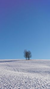 Preview wallpaper trees, snow, horizon, minimalism, winter, sky