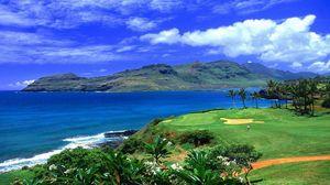 Preview wallpaper tropics, beach, palm trees, grass