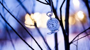 Preview wallpaper watches, branches, winter, pocket watch