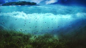 Preview wallpaper water, island, fishes, sea, bottom, vegetation, underwater world, art