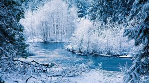 Preview wallpaper winter, river, snow, trees, landscape
