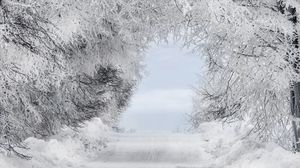 Preview wallpaper winter, snow, forest, road, arch, branches, frost