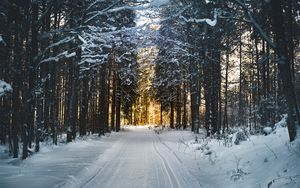 Preview wallpaper winter, snow, road, trees