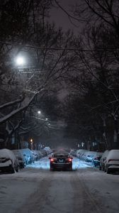 Preview wallpaper winter, street, car, movement, night, branches, trees
