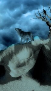 Preview wallpaper wolf, birds, alone, hills, night