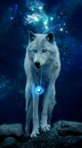 Preview wallpaper wolf, hill, glow, predator, wildlife, photoshop