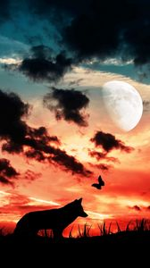 Preview wallpaper wolf, silhouette, dark, moon, clouds, butterfly