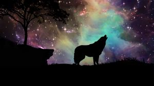... Preview wallpaper wolf, starry sky, silhouette, art