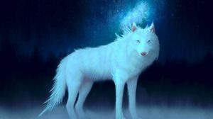 Preview wallpaper wolf, white, art, animal