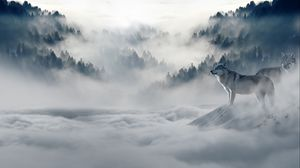 ... Preview wallpaper wolf, wolves, predators, fog, snow, mountains