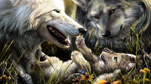 Preview wallpaper wolves, family, birth, love, kid