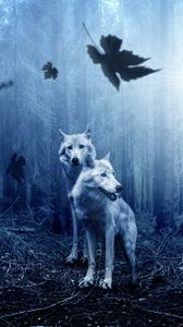 Preview wallpaper wolves, predators, forest, photoshop