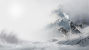 Preview wallpaper wolves, predators, snow, winter, howl